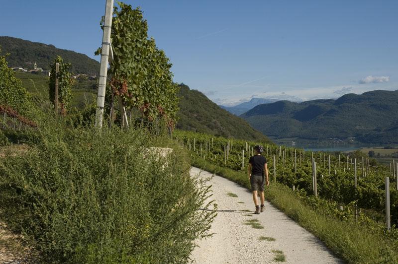 Wandern rund um Altenburg