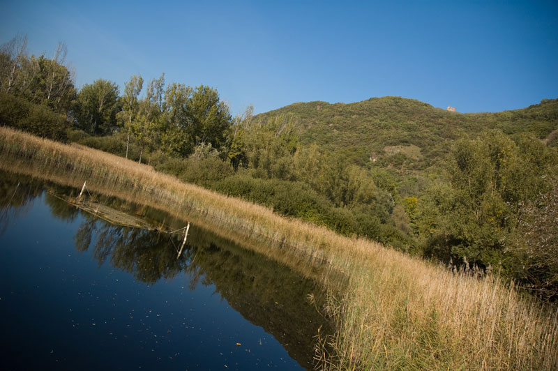 Biotop Kalterer See