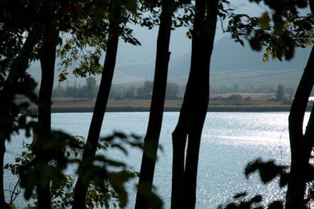 Ostufer am Seerundwanderweg