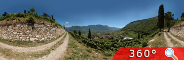 360° Tramin Kastelaz Foto 1