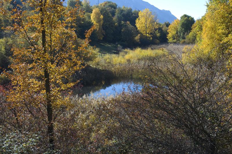 Herbststimmung im Biotop Castelfede