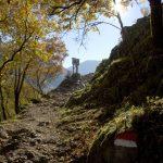 Gut markierte Wanderwege führen durch das Biotop im Südtiroler Unterland
