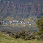 Tramin in Südtirols Süden
