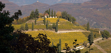 Kastelaz Wein-Hügel