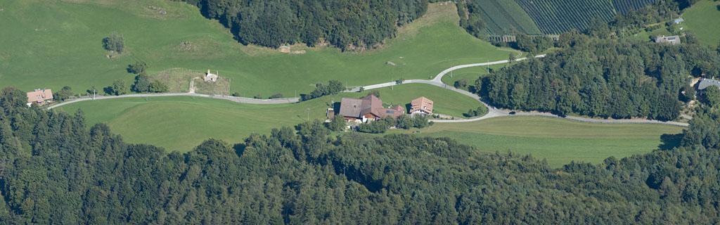 Der Steckerhof