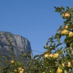 Der Gantkofel im Süden Südtirols
