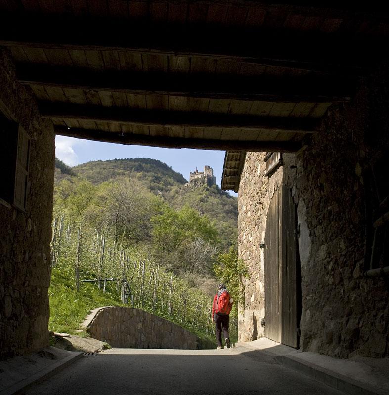 Drei Burgen Wanderung