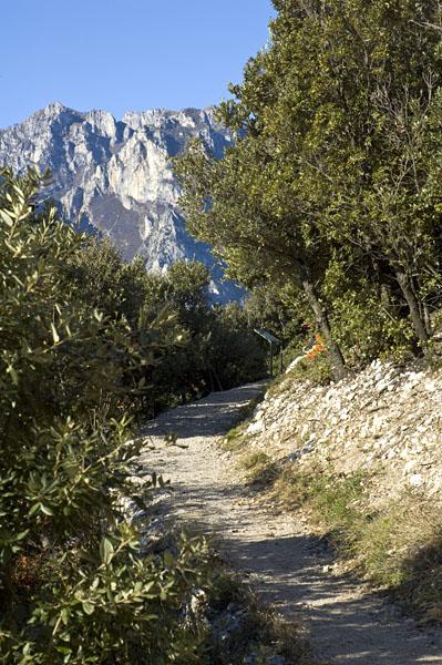 Panoramaweg Busatte