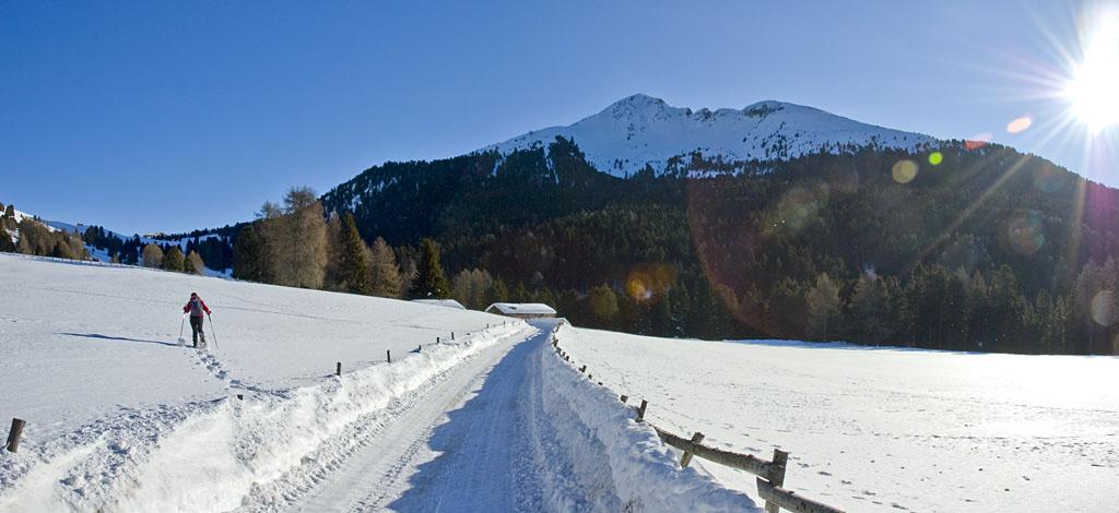 Schwarzhorn