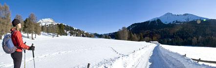 Zwischen dem Weißhorn und dem Schwarzhorn, der sich heute entgegen seinem Namen auch in Weiß präsentiert
