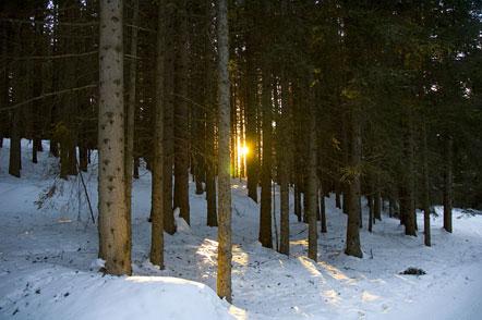 Die Sonne geht hier in der Umgebung von Aldein und Petersberg erst recht spät unter