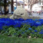 Blumenschmuck in der Kurstadt Meran in Südtirol