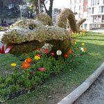 Fleißige Gärtner haben einmal mehr die Kurpromenade von Meran phantasievoll gestaltet