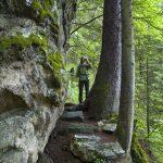 Wanderung rund um den Aussichtsberg Penken