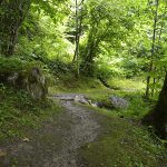 Seerundwanderweg um den Zeller See