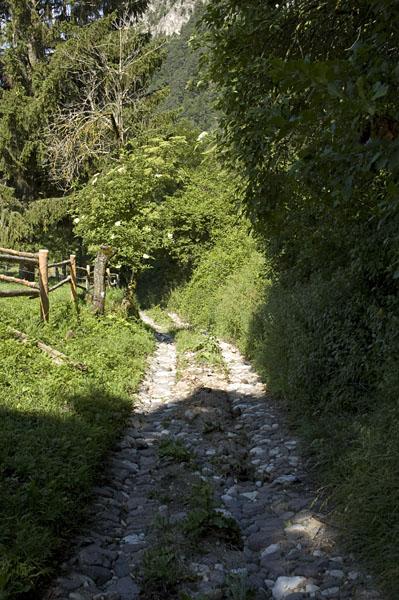 Wandern im Naturpark Trudner Horn