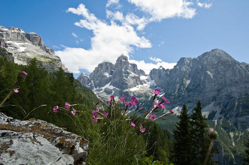 Die Gipfel der Brenta Dolomiten
