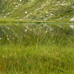 Wandern an den Spronser Seen