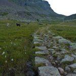 Bergtour im Val Cadino