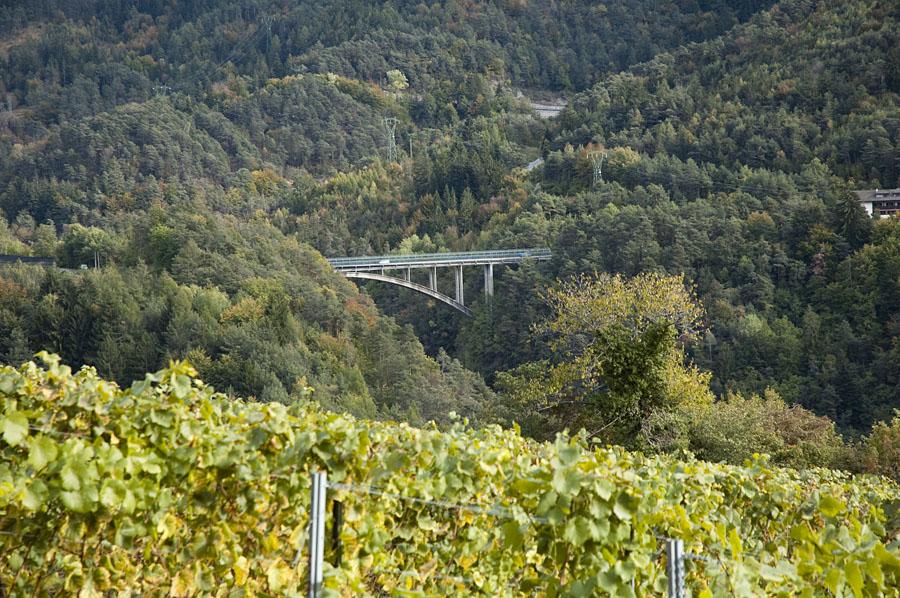 Auf der Katzenleiter im Südtiroler Unterland