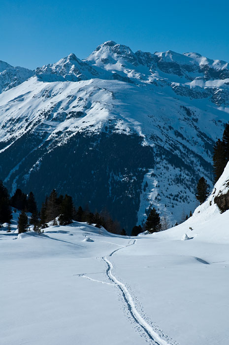 Schneeschuhwanderung zur Traminner Alm im Sarntal