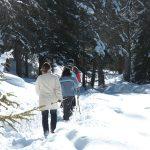 Winterwanderung am Felixer Weiher