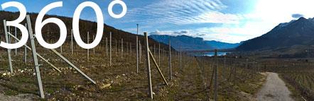 Am Eingang des Frühlingstal nördlich des Kalterer Sees inmitten der Weinebrge unter Kaltern