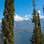 Mediterranes Lebensgefühl am Gardasee