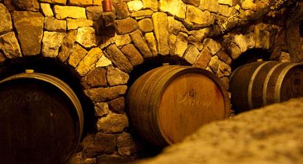 Weinwandertag Kaltern 2010: Im Steinmauer Kelelr von Dominikus Morandell