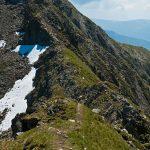 Berggrat im Passeiertal