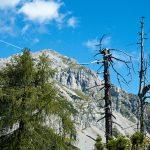 Wanderung zum Croce dell'Altissimo