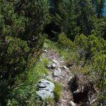 Wanderung zum Croz dell'Altissimo