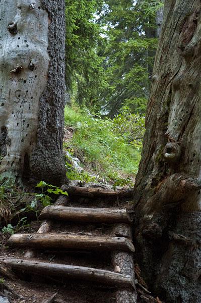 Wanderung zum Croz dell' Altissimo