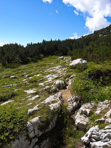 Wandern im Paganella Gebiet