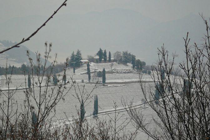 Kastelatz Hügel - Weinhügel über Tramin