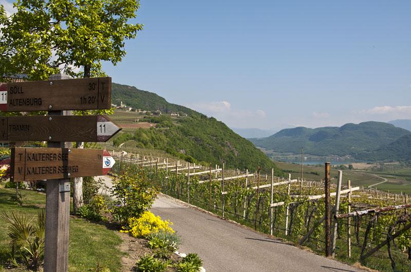 Weinwandertag Kaltern 01