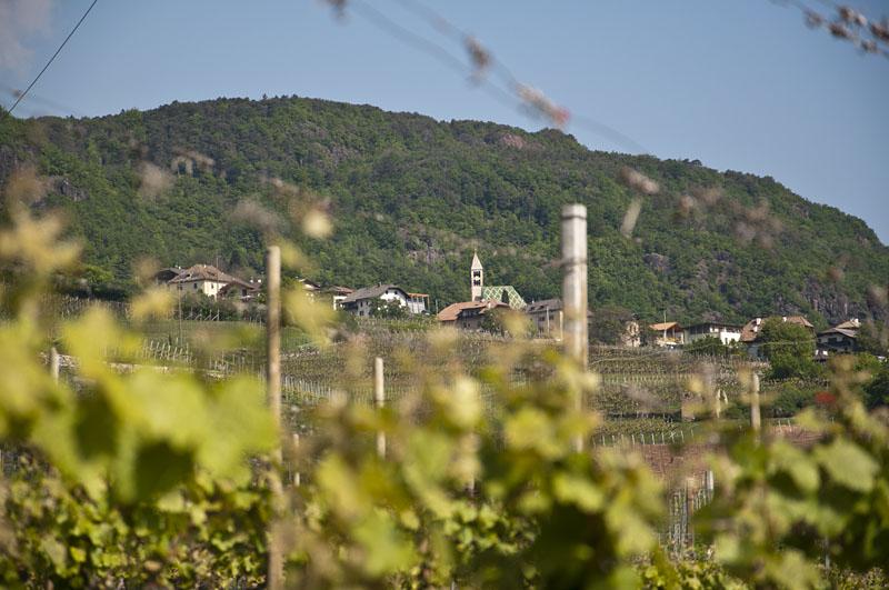 Weinwandertag Kaltern 02