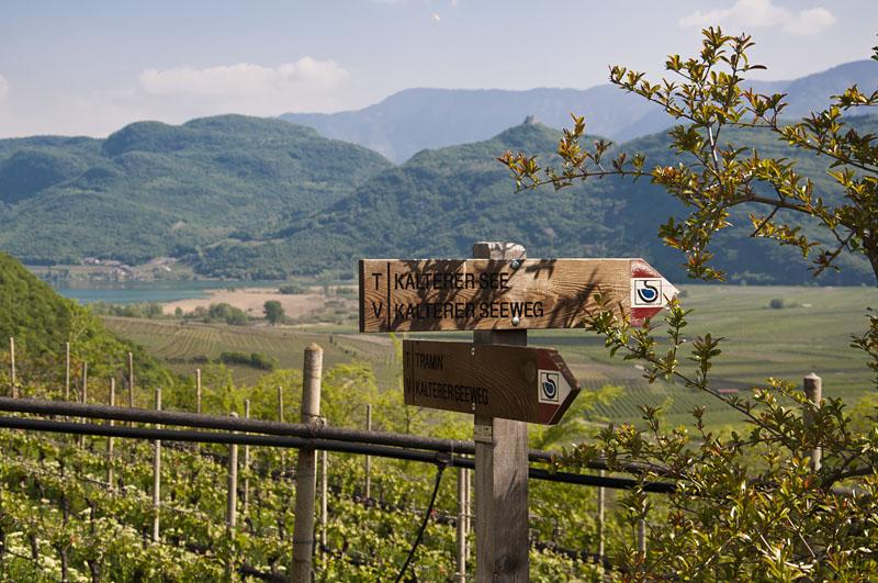 Weinwandertag Kaltern 05