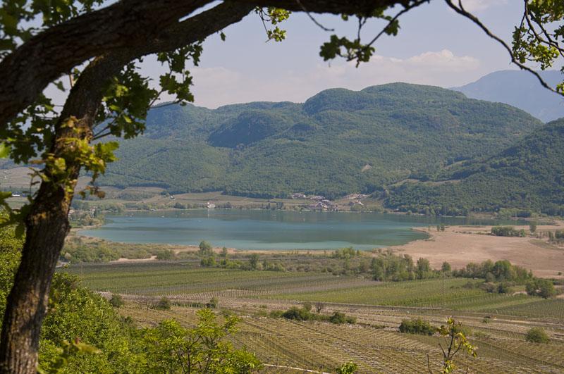 Weinwandertag Kaltern 06
