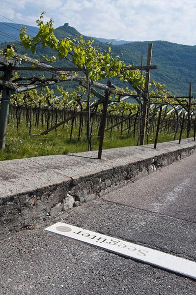 Weinwandertag Kaltern 07