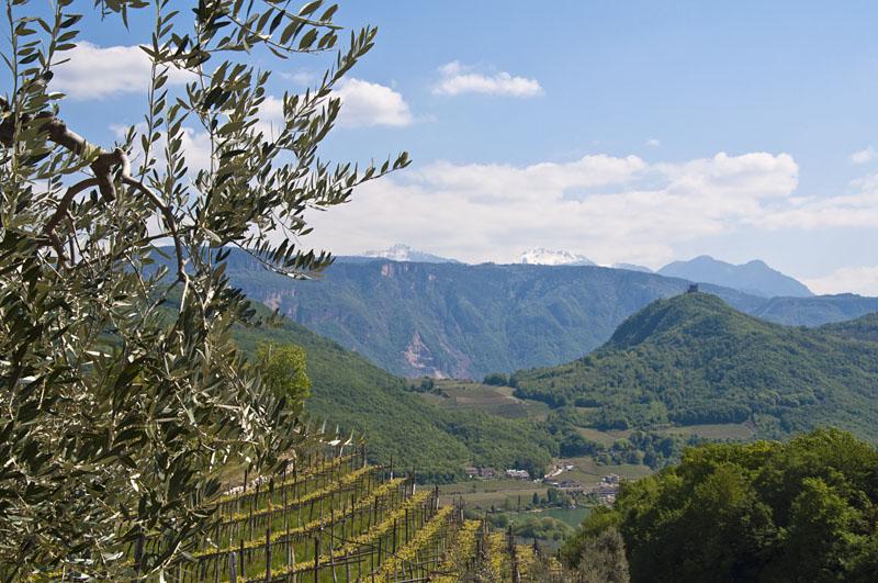 Weinwandertag Kaltern 26