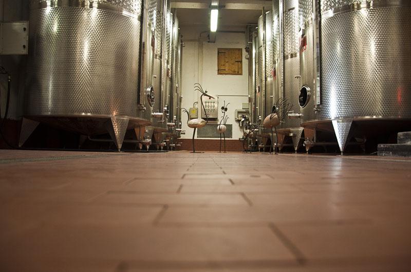 Weinwandertag Kaltern 37