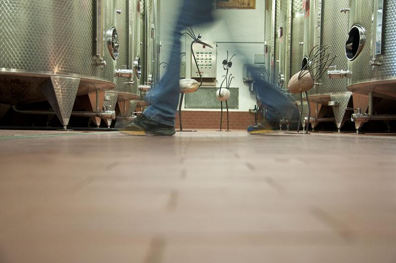 Weinwandertag Kaltern 38