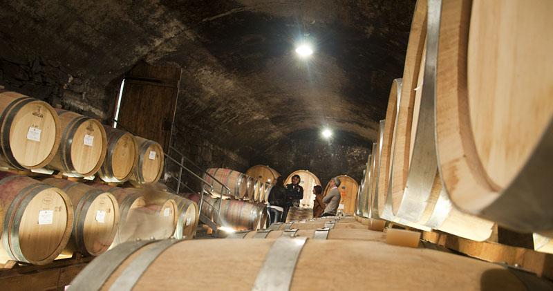 Weinwandertag Kaltern 39