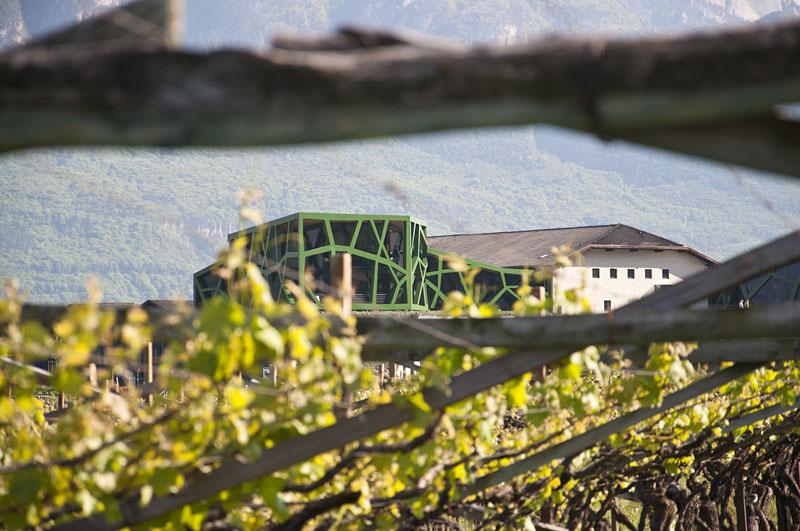 Weinwandertag Kaltern 48