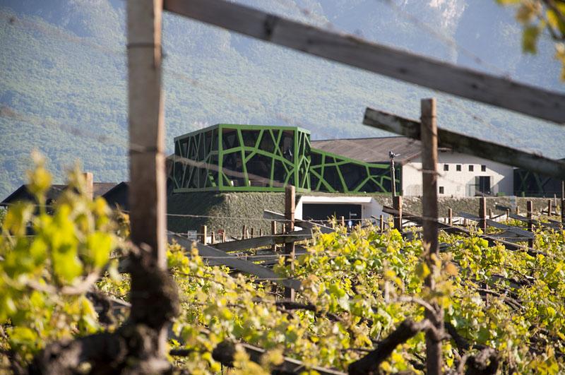 Weinwandertag Kaltern 50