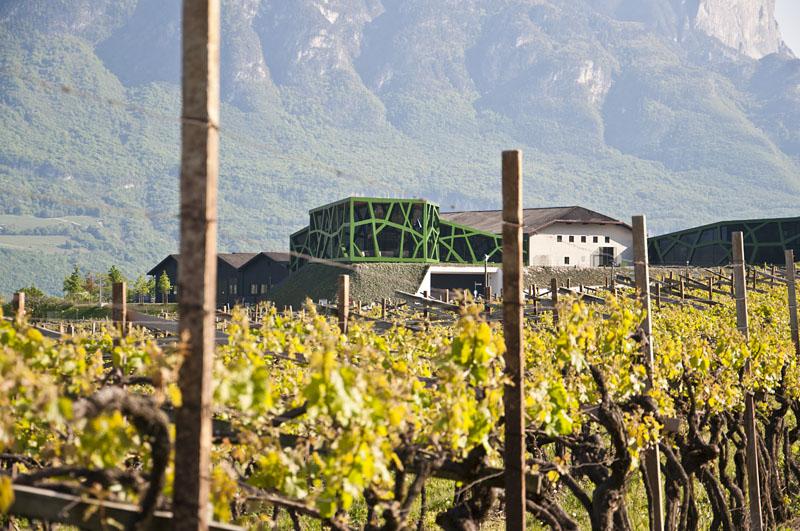 Weinwandertag Kaltern 51