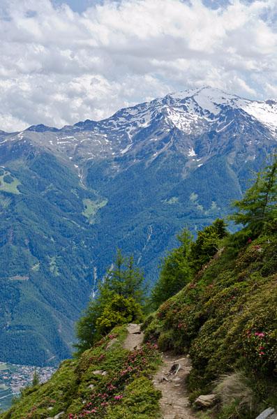 Taken at Latitude/Longitude:46.650642/10.866008. 3.82 km North Latsch Trentino Alto Adige Italy  (Map link)