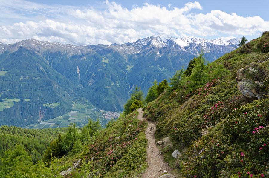 Taken at Latitude/Longitude:46.650648/10.866004. 3.82 km North Latsch Trentino Alto Adige Italy  (Map link)