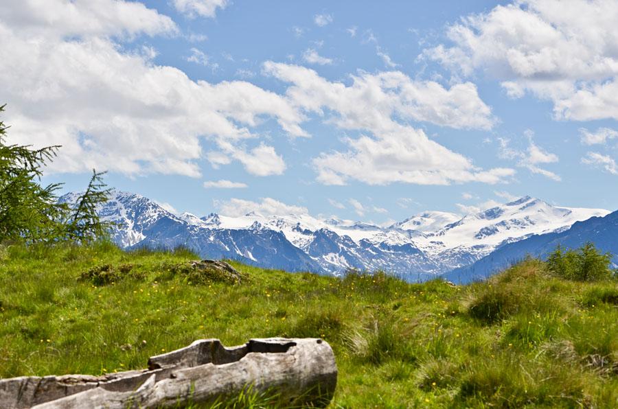 Taken at Latitude/Longitude:46.645576/10.864726. 3.25 km North Latsch Trentino Alto Adige Italy  (Map link)